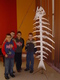 Galeria Gry i zabawy - 2007