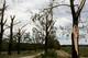 Galeria Tornado -  Stary Ujazd